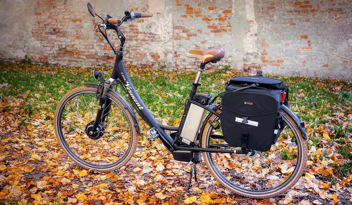 e-bike on leaves