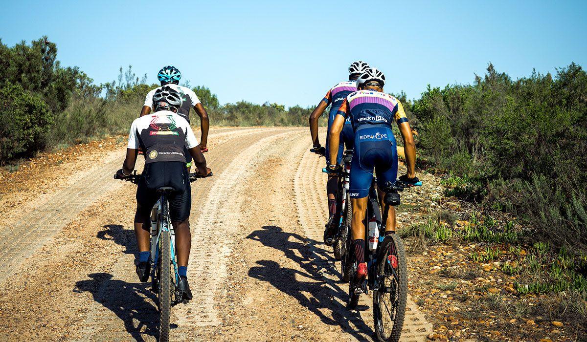 Four men riding mountain bikes