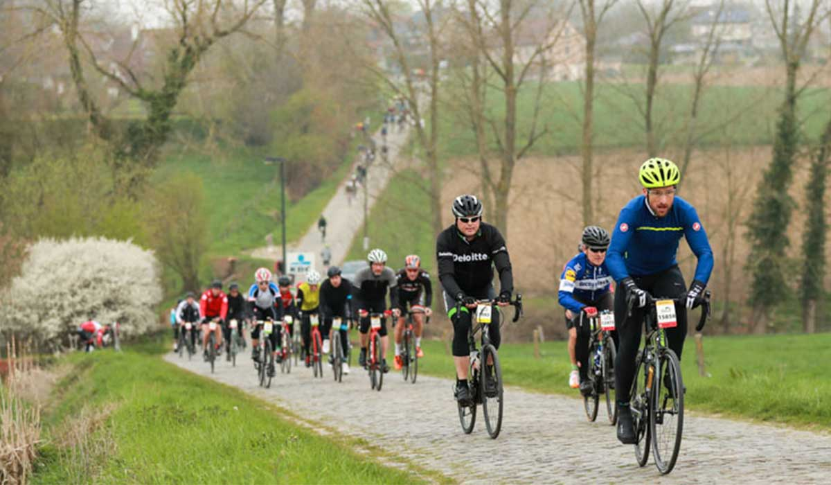 Cyclists in Flanders