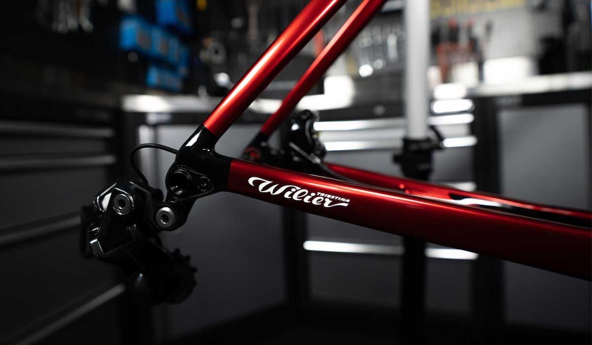 Wilier filante seat stays