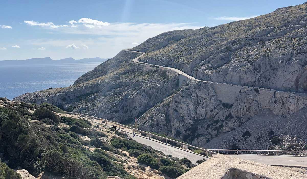 Cap de Formentor cycling
